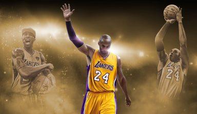 Баскетбол НБА: Лучшая баскетбольная лига мира, в которой выступает единственная канадская команда