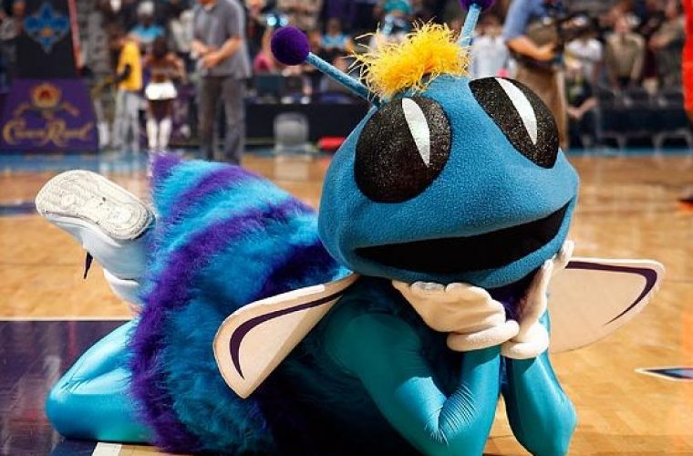 Шарлотт Хорнетс — факты о команде NBA
