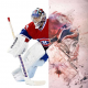Монреаль Канадиенс  — факты о команде NHL