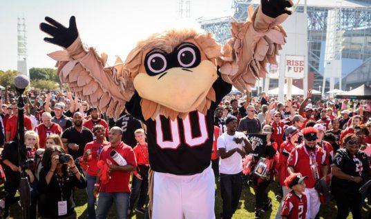 Атланта Фэлконс — факты о команде NFL