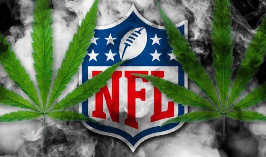 Игроки НФЛ хотят менее строгого подхода к употреблению марихуаны