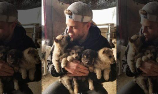 Визит американского фристайлиста спас 90 корейских собак