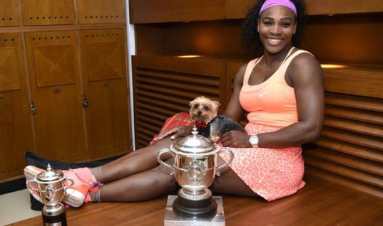 Прогноз букмекеров: Серена Уильямс главный фаворит на победу на Ролан Гаррос 2018 года