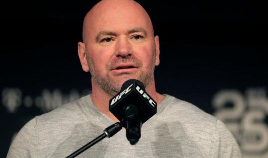 Болельщики и бойцы недовольны переносом UFC 232