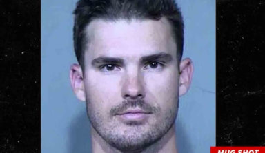 Пьяный игрок МЛБ пытался пробраться в чужой дом через дверцу для собаки
