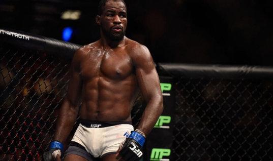 Прогноз букмекеров на бой-реванш UFC Андерсон — Блахович